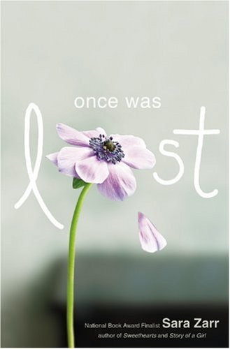 Image result for Once was lost book