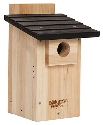 Swallow Tree House (Nature's Way Bird Products CWH4 Cedar Bluebird Viewing House)