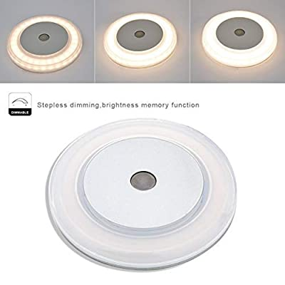 12V RV LED Touch Boat Ceiling Light - 3W Dimmer 2800K Soft Warm Memory Marine Lamp Annular Frosted Lens with Stepless Dimmable, Surface Mount, Hidden Fastener Design, Stainless Steel Screw, Pack of 6: Automotive