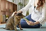 INABA Churu Lickable Purée Wet Treat for Cats