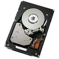 IBM 500 GB 2.5-Inch Internal Hard Drive 81Y9726 by IBM