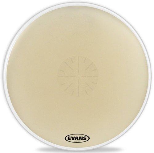 Evans Strata 1400 Reverse Dot Timpani Head, 36 Inch