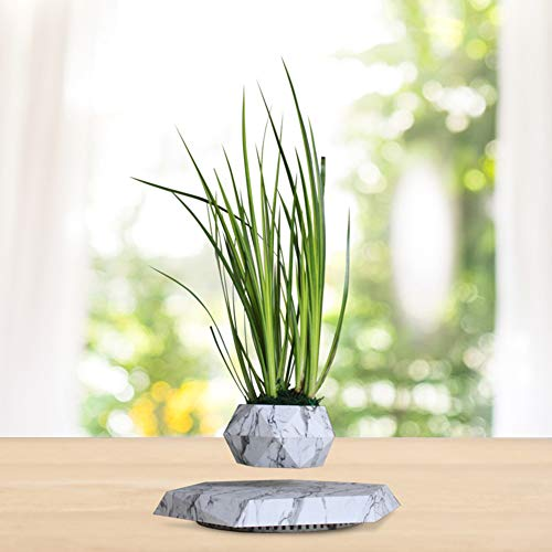 Decorative Plant Pot Made of Silicone, Oak Wood Base, Suspended by Induction, Suitable for Aerial Plants Levitation Flower Pot,D ()