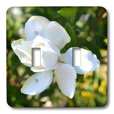 lsp_25626_2 Patricia Sanders Flowers - Natures Expression of a Gardenia - Light Switch Covers - double toggle switch - Gardenia Clock Plate
