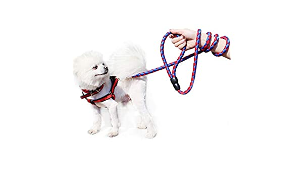 Collar para mascotas Cordón de nylon fuerte simple alargar correa ...