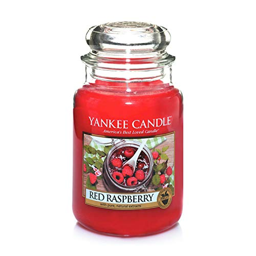Yankee Candle Large Jar Candle, Red Raspberry - 1323186Z