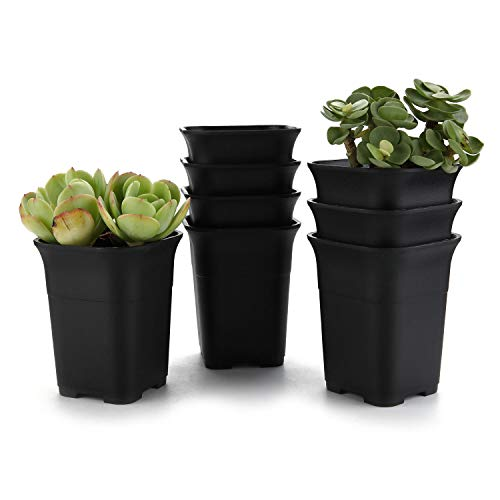 T4U New 4.25 Inch Plastics Nursery Pot Black Set of 8, Square Plant Pot Garden Planter Container Patio Yard Balcony Outdoor for Seedlings Vegetable Fruits Succulent Flower Home Decor