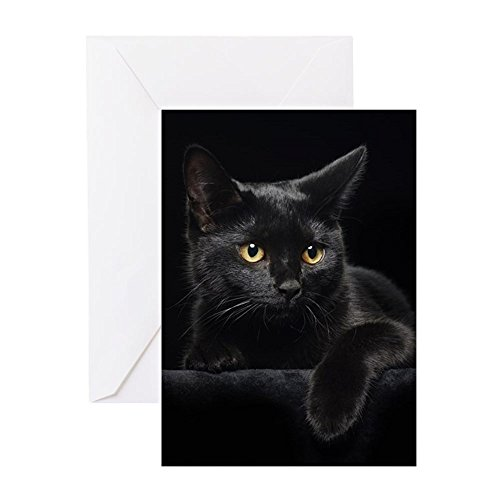 CafePress Black Cat Greeting Card (20-pack), Note Card with Blank Inside, Birthday Card Glossy