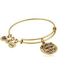 Alex and Ani Wild Heart Expandable Rafaelian Bangle Bracelet