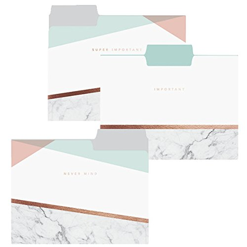 Copper Marble File Folder Set