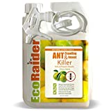 EcoRaider Ant Killer (32 oz), also Kills Bed Bugs, Remote Trigger Sprayer, Instant...