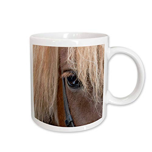 - 3dRose Danita Delimont - Horses - Detail of sorrel horse with flax mane. - 11oz Two-Tone Black Mug (mug_313644_4)