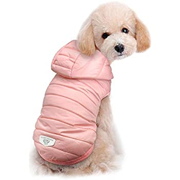 bb5cf9335e Beirui Cold Weather Dog Coats - Windproof Dog Warm Hoodies - Lightweight Dog  Jacket - Cute Dog Clothing Suitable Toy Breeds