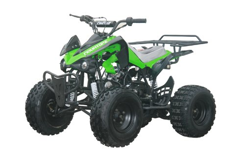 Coolster 125cc Sports ATV 8inc Tires with Reverse