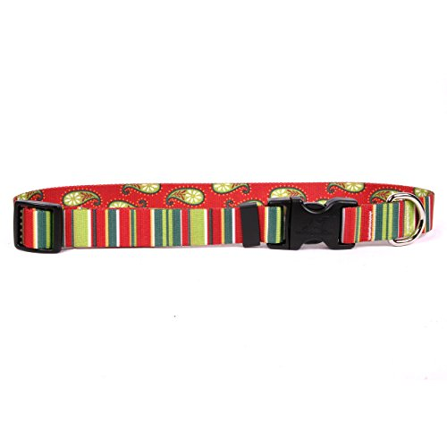 "Yellow Dog Design Holiday Stripes Dog Collar Fits Neck 14 To 20""/4"" Wide, Medium 3/4"" Wide"