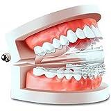 Foshin Whitening Perfect Comfort Fit Upper Lower Teeth Veneer (TOP+Bottom)
