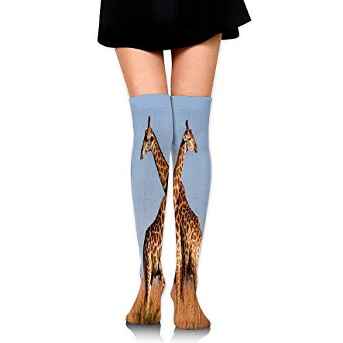 Girrafe Socks Mens Socks Giraffe Ithala Kzn South Africa Stylish Womens Stocking Decoration Sock for Girls Womensoftball Costume Kids