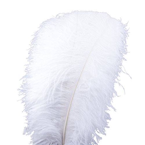 White Ostrich Feathers (AWAYTR Natural Large Plum Ostrich Feathers 21-24 inch(53-60cm) for Home Wedding Decoration (10Pcs,)