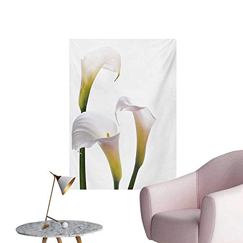 - Anzhutwelve Flower Photo Wall Paper Flourishing Calla Lilies on White Fresh Spring Bouquet Gentle Nature ThemeGreen White Yellow W32 xL36 Funny Poster