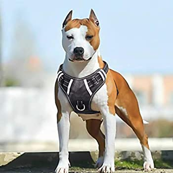 BABYLTRL Big Dog Harness No Pull Adjustable Pet Reflective Oxford Soft Vest for Large Dogs Easy Control Harness (XL, Black)