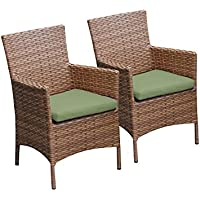 TKC Laguna Wicker Patio Arm Dining Chairs in Cilantro (Set of 2)