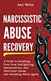Narcissistic Abuse Recovery: A Guide to Breaking