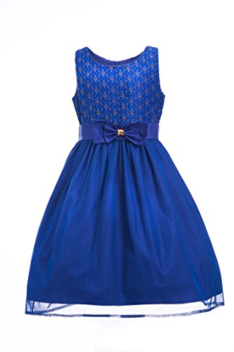 (Emma Riley Girls' Sleeveless Lace Bodice Mesh Pleated Skirt Princess Party Dress, Blue, 14)