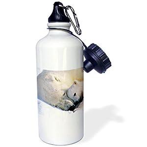 3dRose wb_516_1 Polar Bear and Cub Sports Water Bottle, 21 oz, White