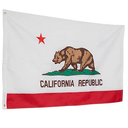 ca bear flag - 7