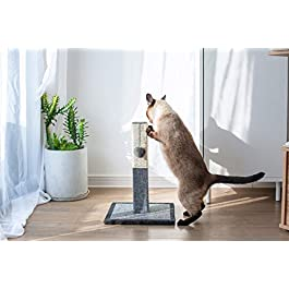 Catry Cat Tree Cat Scratching Post with Natural Rope