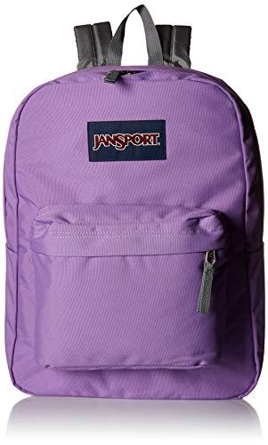 JanSport Superbreak Backpack Vivid (Best Pack Backpacks)