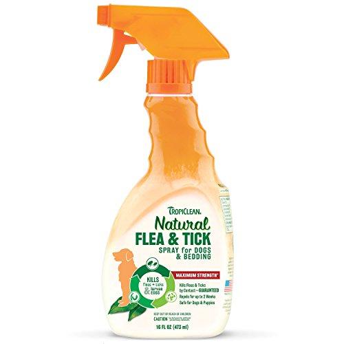 Nature Care Flea And Tick Home Spray
