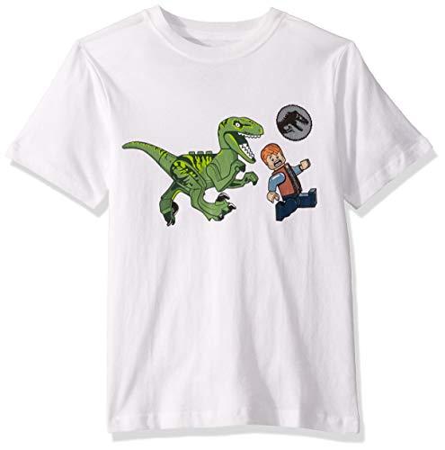 LEGO Star Wars Boys' Big Jurassic World Feed Your Pets T-Shirt, Gray, 8