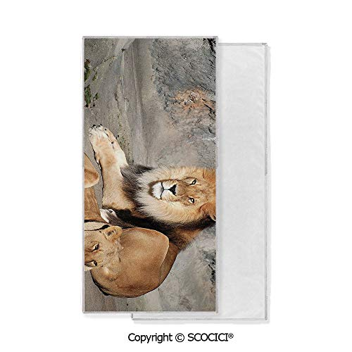 (Long-Lasting and Soft Lightweight Quick-Dry Polyester Towel,Male and Female Lions Bag in the Sun Wild Cats Habitat King of Jungle (15x30 inch),Suitable For Camping, Running, Cycling, Gym,Highly Absor)