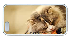 Cute iphone 5S covers shop Fluffy cat sleeping TPU White for Apple iPhone 5/5S