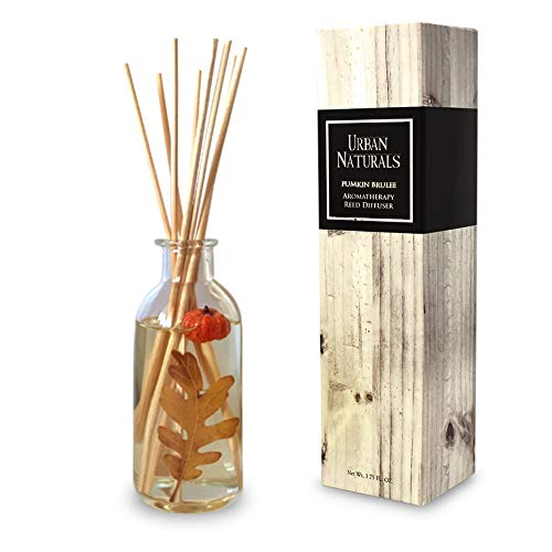 - Urban Naturals Pumpkin Brulee Scented Sticks Reed Diffuser Oil Set | Fall & Winter Home Scent | Creamy Pumpkin Pie, Nutmeg & French Vanilla | Beautiful Autumn Home Decor | Great Gift Idea