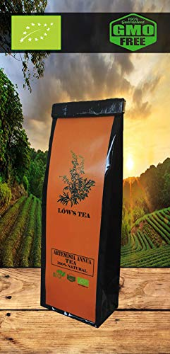 Organic Sweet Wormwood Tea.Artemisia annua Tea.Organic Sweet Annie Tea