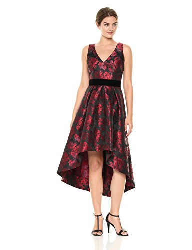 Eliza J Women's Floral Fit and Flare Dress, Black/Red, 8