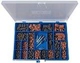 PFERD 46090 285 Pieces Policap Abrasive Caps and