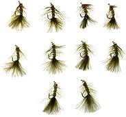 10pcs Bead Head Woolly Bugger Wet Flies Sinking Trout Fishing Flies Olive