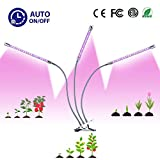 Grow Light, Aoray [2019 Upgraded Version] 30W Grow Lamp 60 LED Red/Blue Full-Spectrum Bulbs, 3-Head Adjustable Gooseneck, Automatic Switch 3/6/12H Timer 6 Dimmable with Table Clamp Plant Grow Light
