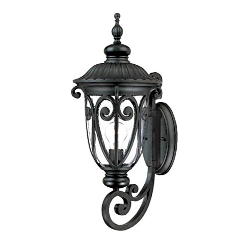 Acclaim 2111BK Naples Collection 1-Light Wall Mount Outdoor Light Fixture, Matte Black Acclaim Lighting Naples Collection