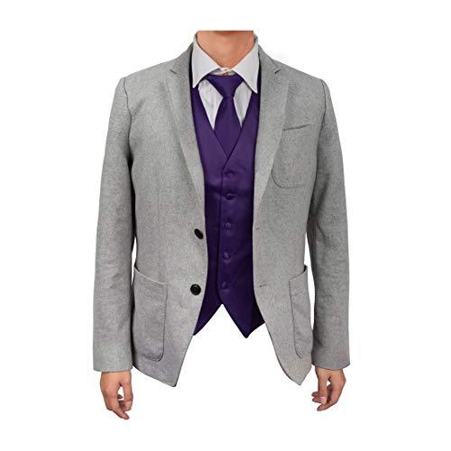 Dan Smith DGDE0002-M Dark Violet Gentlemen Plain Microfiber Satin For Designer Vest Matching Neck Tie