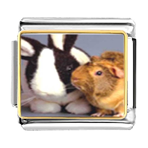 GiftJewelryShop Gold Plated Bunny and Guinea Pig Bracelet Link Photo Italian Charms