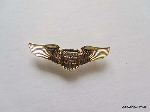 PRIVATE PILOT FLIGHT WINGS GOLD PIN PRIVATE AIRPLANE FLIGHT SCHOOL BADGE -