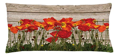 (Ambesonne Rustic Throw Pillow Cushion Cover, Close Line of Poppy Petals Field Meadow Summer Holiday Sun Plant Floral Theme, Decorative Accent Pillow Case, 36 X 16 Inches, Orange Brown)
