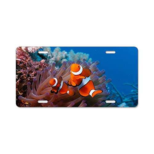 Reef License Plate - SUJQNGC Sea Reef Coral Fish Anemones Clown License Plate Novelty Auto Car Tag Vanity Gift for Men