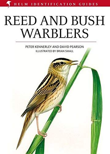 reed and bush warblers - 2