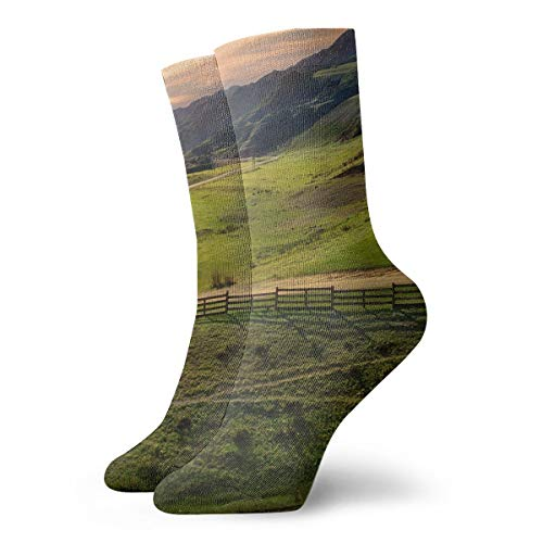 WEEDKEYCAT Countryside Field House Adult Short Socks Cotton Gym Socks for Mens Womens Yoga Hiking Cycling Running Soccer Sports