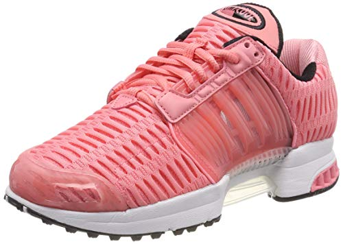 pink Adidas Rosa Sneaker 1 Pink Climacool xYqwqPIB